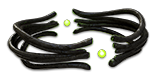 Darkness Enthroned inventory icon.png