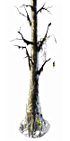 Webbed Tree inventory icon.png