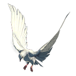 White Dove Pet inventory icon.png