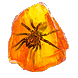 Shuddering Fossil inventory icon.png