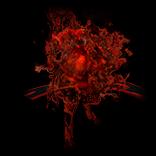 Demonic Raise Spectre Effect inventory icon.png
