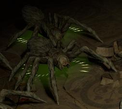 Brooding Tarantula