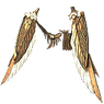 Faith Guard Wings inventory icon.png