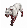 Wild Panther Pet inventory icon.png