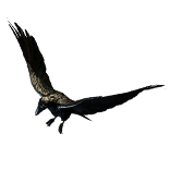 Raven Pet inventory icon.png
