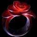 Mokou's Embrace inventory icon.png