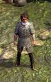 Commander's Brigandine.bmp