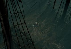 The Ship Graveyard area screenshot.jpg