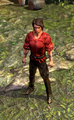 Dragonscale Boots.bmp
