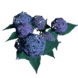 Arena Flowers inventory icon.png