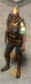 Solaris Lorica front.png