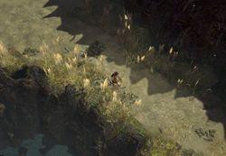 The Ledge area screenshot.jpg