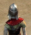 Itemskin Close Helmet Back.png