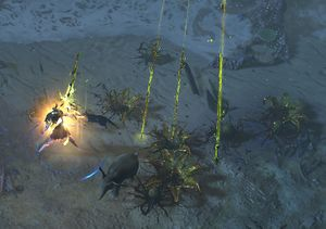 Toxic Rain Official Path Of Exile Wiki