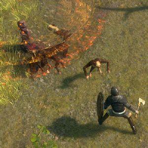 Decoy Totem skill screenshot.jpg