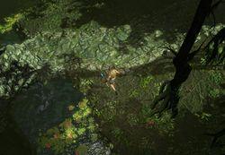 Пойма реки (Акт 2) area screenshot.jpg