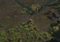 Илистые низины (Акт 1) area screenshot.jpg