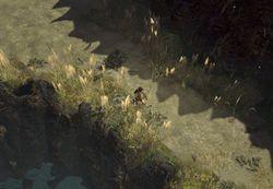 Утес area screenshot.jpg