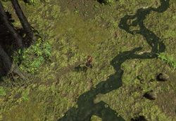Топь (Акт 2) area screenshot.jpg