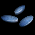 Ui beta pills b.png