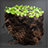 Organic Fertilizer Pellet Icon.png