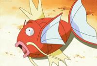 Splash Anime.png