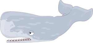 WhiteWhale.png