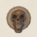 Trophy of a Fallen Icon.png