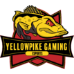 YellowPike Gaminglogo square.png