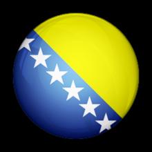 Team Bosnia and Herzegovinalogo square.png