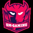 QM Gaminglogo square.png
