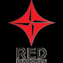Red Diamondslogo square.png