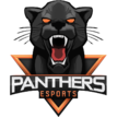 Panthers Esportslogo square.png