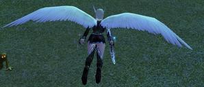 Wings of Winged Elves.png