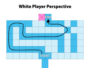 DG White Player Perspective.png