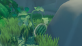 Watermelon on island.png