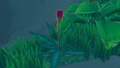 Red Flower on island.png