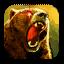 RO2 BearForm.png