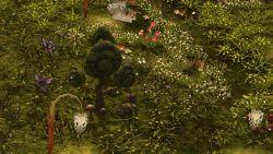 RO BloomingFlowerLand.jpg