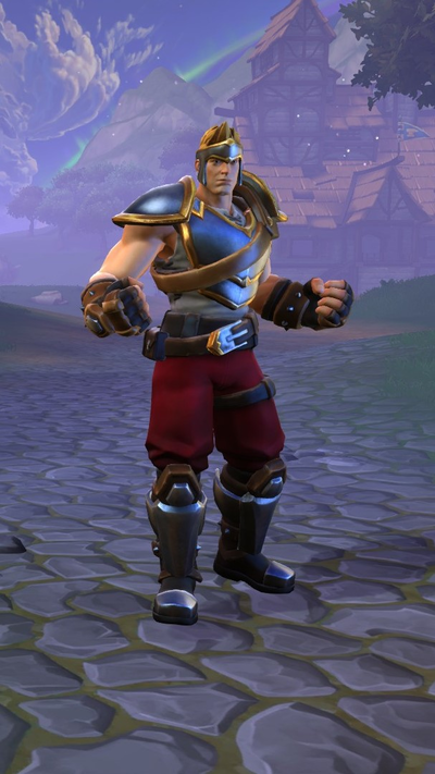 Skin Warrior.png