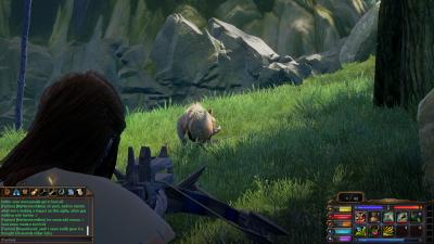 Little Boar.png