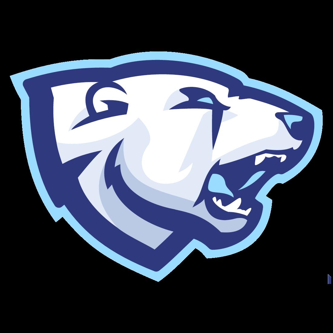 Northern Gaming - Rocket League Esports Wiki