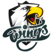 Wings E-Sportslogo square.png