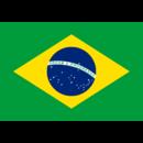 Brazillogo square.png