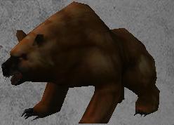 Card - Bear.jpg