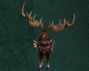 Card - Giant Antler Reindeer.jpg