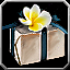 Icon - Castor's Package.png