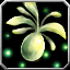 Icon - Seed - Sunlight Paradisia.png