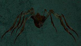 Card - Long-Legged Carrion Spider.jpg