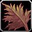 Icon - Strange Magical Leaf.png